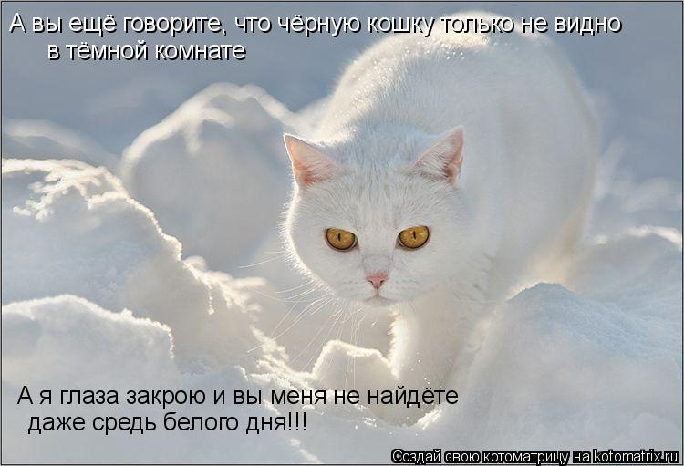 Котоматрица: А вы ещё говорите, что чёрную кошку только не видно  в тёмной комнате А я глаза закрою и вы меня не найдёте даже средь белого дня!!!