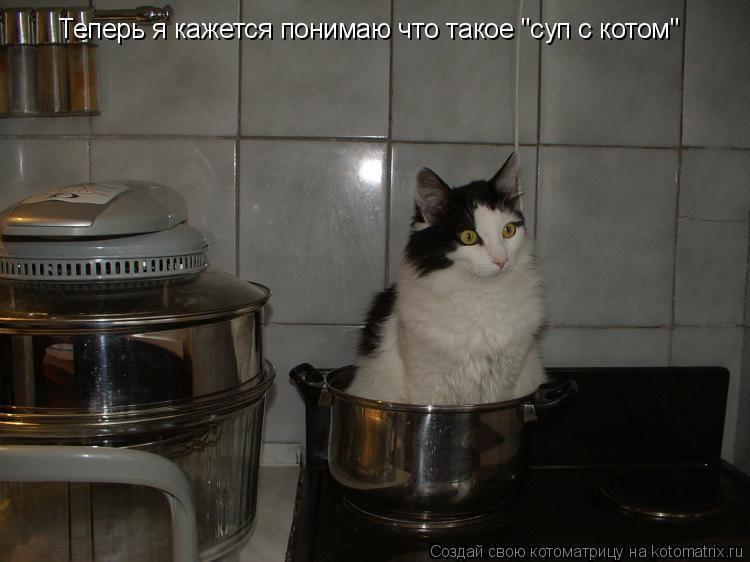"""Котоматрица: Теперь я кажется понимаю что такое """"суп с котом"""""""