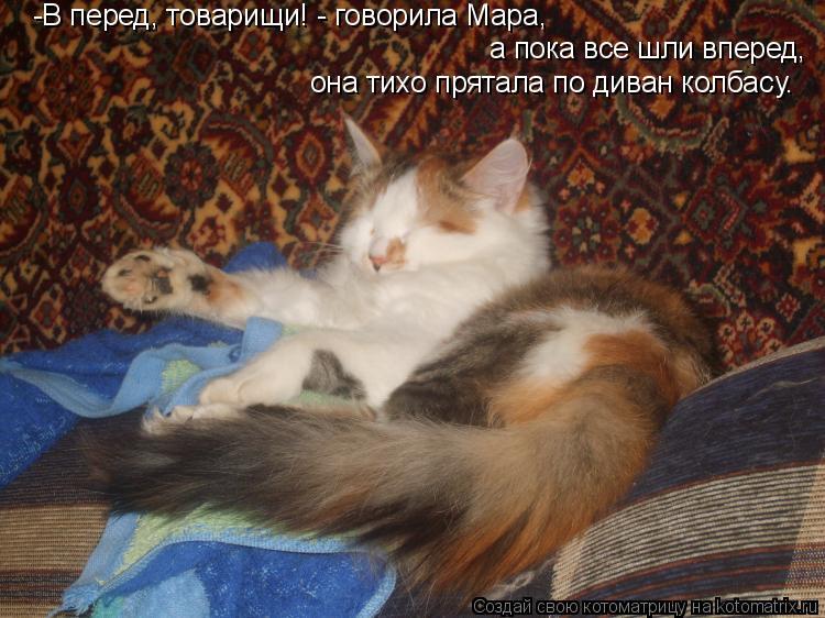 Котоматрица: -В перед, товарищи! - говорила Мара, а пока все шли вперед, она тихо прятала по диван колбасу.