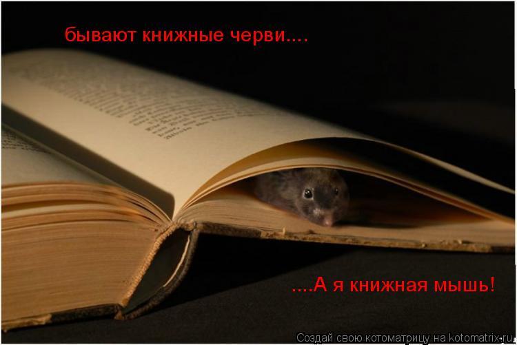 Котоматрица: бывают книжные черви.... ....А я книжная мышь!