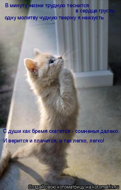 Котоматрица: В минуту жизни трудную теснится  в сердце грусть одну молитву чудную твержу я наизусть С души как бремя скатится - сомненья далеко. И веритс