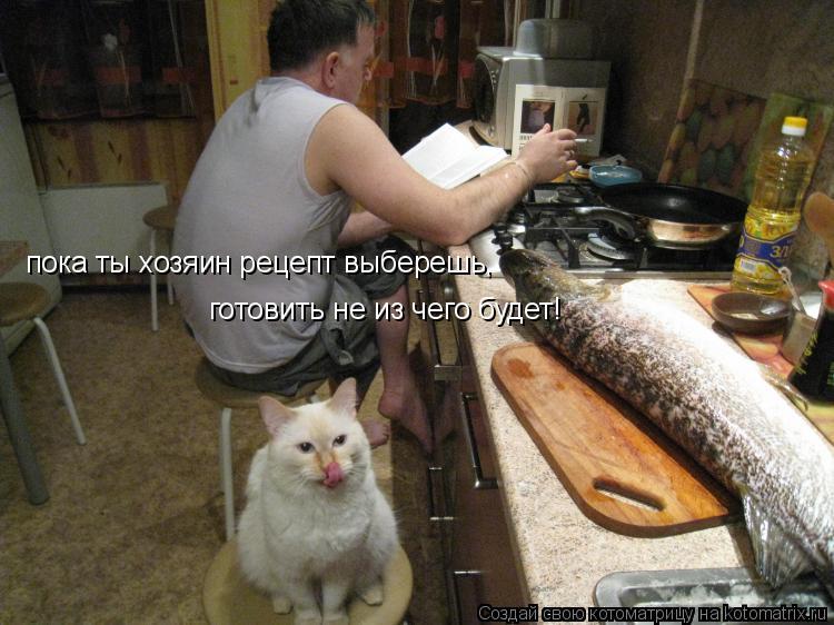 Котоматрица: пока ты хозяин рецепт выберешь, готовить не из чего будет!