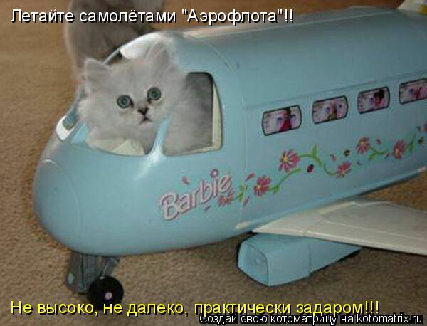 """Котоматрица: Летайте самолётами """"Аэрофлота""""!!    Не высоко, не далеко, практически задаром!!!"""