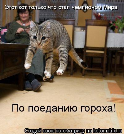 Котоматрица: Этот кот только что стал чемпионом Мира По поеданию гороха!
