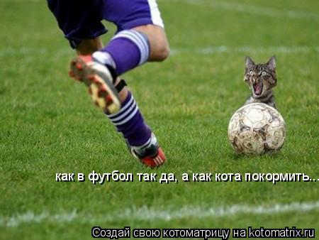 Котоматрица: как в футбол так да, а как кота покормить...