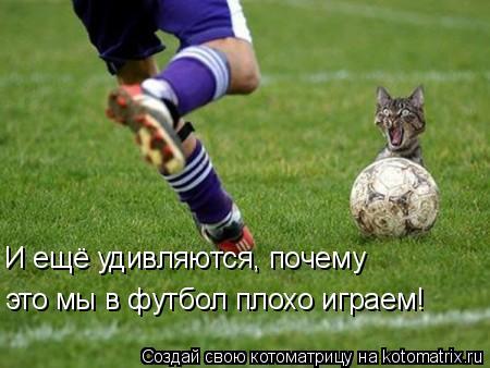Котоматрица: И ещё удивляются, почему это мы в футбол плохо играем!