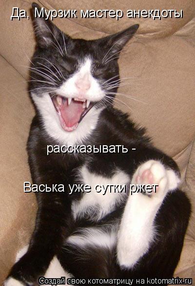 Котоматрица: Да, Мурзик мастер анекдоты  рассказывать -  Васька уже сутки ржет