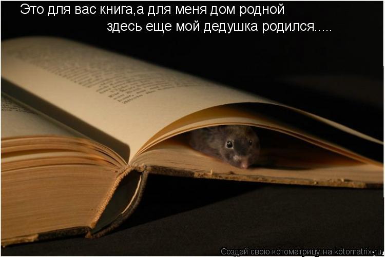 Котоматрица: Это для вас книга,а для меня дом родной здесь еще мой дедушка родился.....
