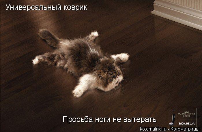 Котоматрица: Универсальный коврик.  Просьба ноги не вытерать