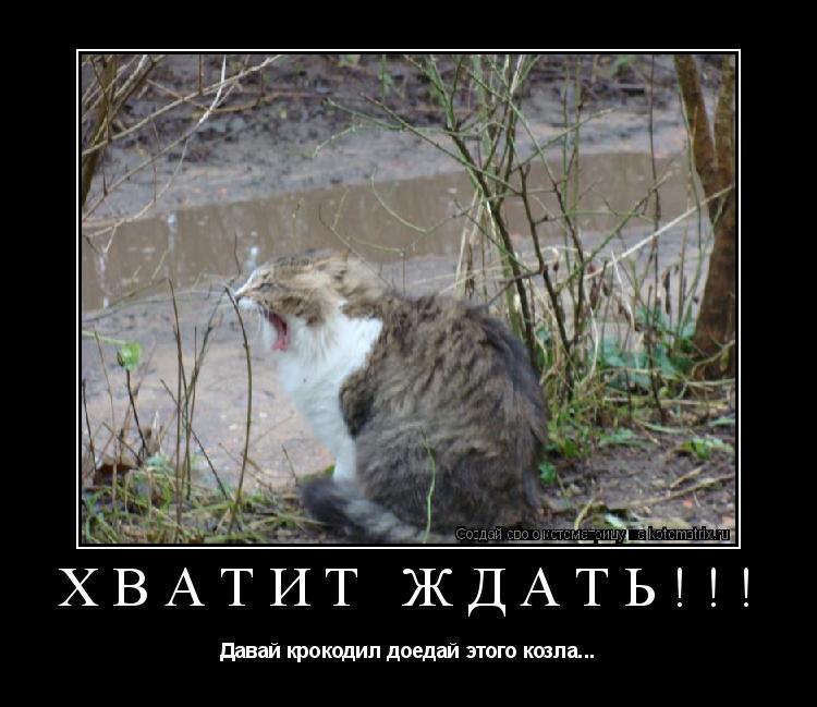 Котоматрица: Хватит ждать!!! Давай крокодил доедай этого козла...