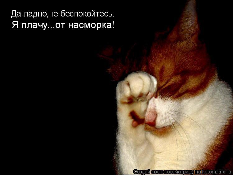 Котоматрица: Да ладно,не беспокойтесь. Я плачу...от насморка!