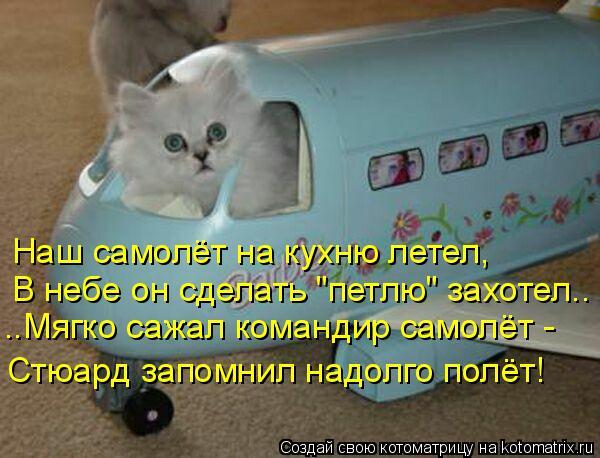 """Котоматрица: Наш самолёт на кухню летел, В небе он сделать """"петлю"""" захотел.. ..Мягко сажал командир самолёт -  Стюард запомнил надолго полёт!"""