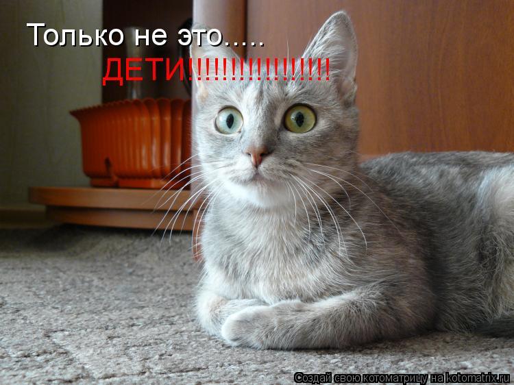 Котоматрица: Только не это..... ДЕТИ!!!!!!!!!!!!!!!!!