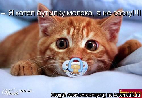 Котоматрица: -- Я хотел бутылку молока, а не соску!!!!!