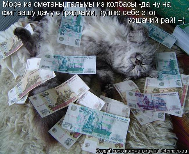 Котоматрица: Море из сметаны,пальмы из колбасы -да ну на фиг вашу дачу с грядками, куплю себе этот  кошачий рай! =)