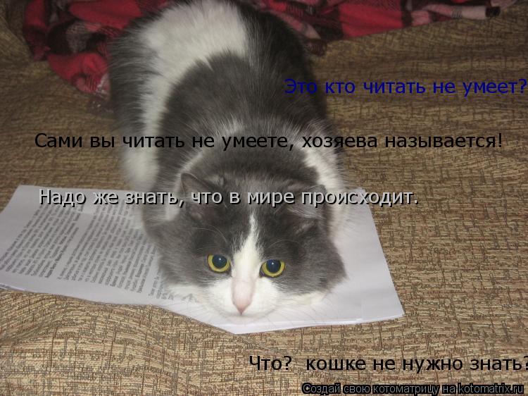 Котоматрица: Это кто хочет у меня документы отобрать!? Мировой кризис. знаете ли, всех касается Это кто читать не умеет? Я!?  Надо же знать, что в мире проис