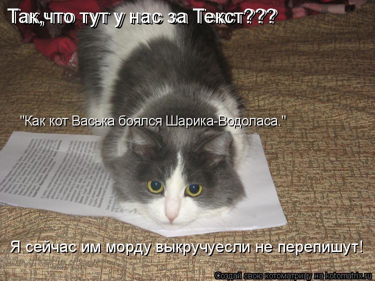 """Котоматрица: Так,что тут у нас за Текст??? Так,что тут у нас за Текст??? """"Как кот Васька боялся Шарика-Водоласа."""" Я сейчас им морду выкручуесли не перепишут!"""