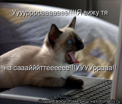 Котоматрица: Ууууррррааааааа!!!!Я вижу тя  на сааайййттееееее!!!УУУУррааа!!