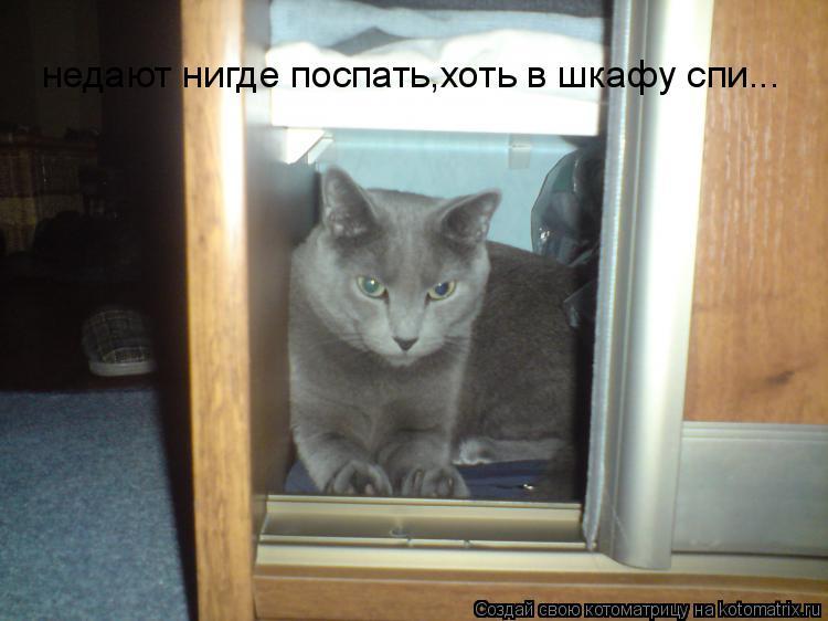 Котоматрица: недают нигде поспать,хоть в шкафу спи...
