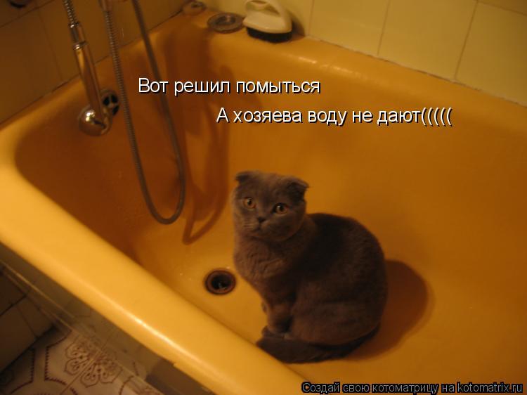 Котоматрица: Вот решил помыться А хозяева воду не дают(((((