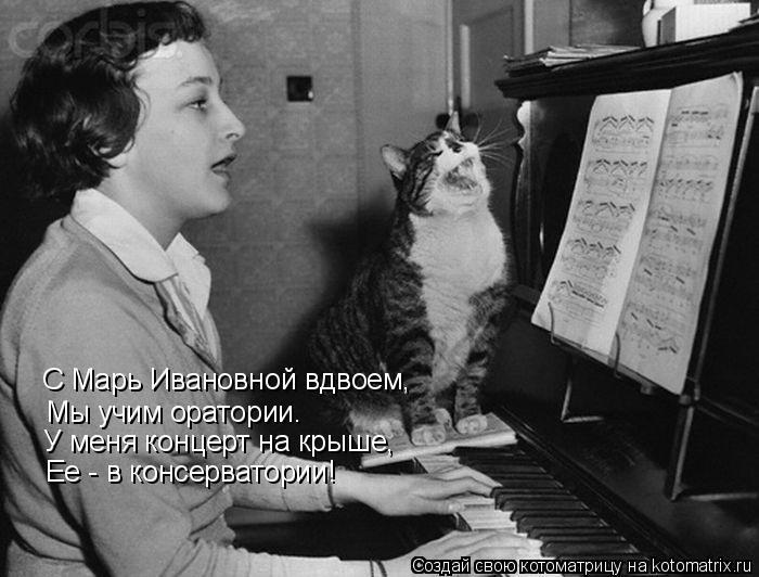 Котоматрица: С Марь Ивановной вдвоем, Мы учим оратории. У меня концерт на крыше, Ее - в консерватории!