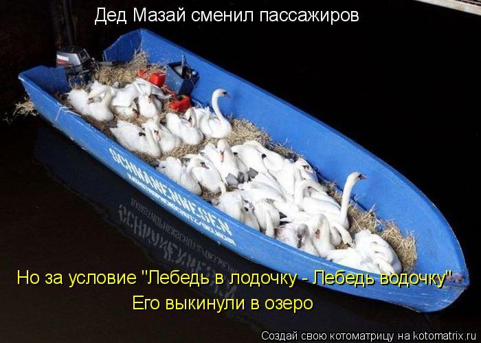 """Котоматрица: Дед Мазай сменил пассажиров Его выкинули в озеро Но за условие """"Лебедь в лодочку - Лебедь водочку"""""""