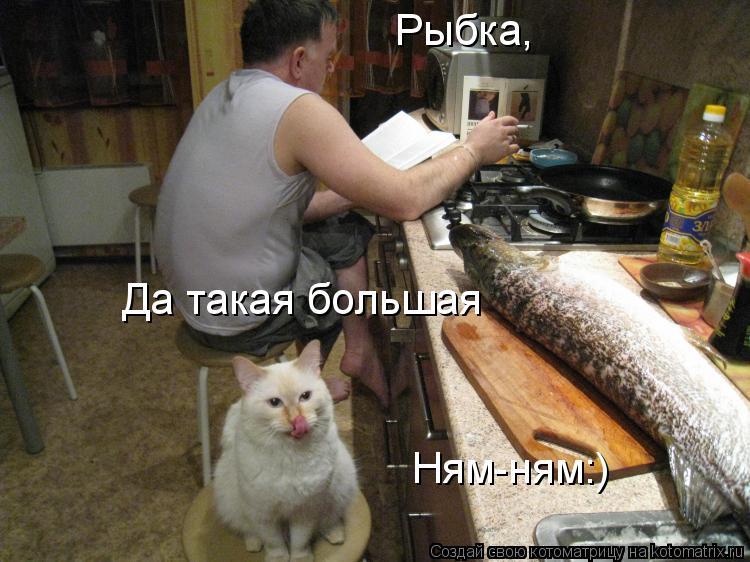 Котоматрица: Рыбка, Да такая большая Ням-ням:)