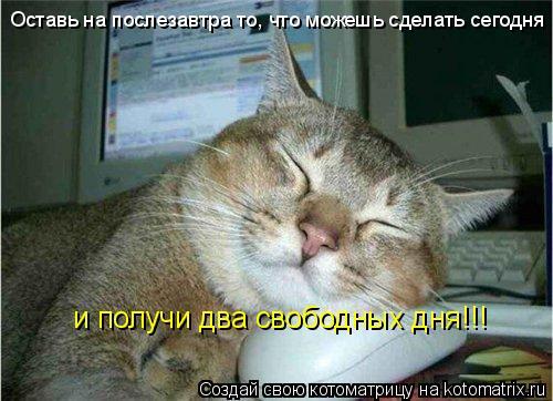 Котоматрица: Оставь на послезавтра то, что можешь сделать сегодня и получи два свободных дня!!!