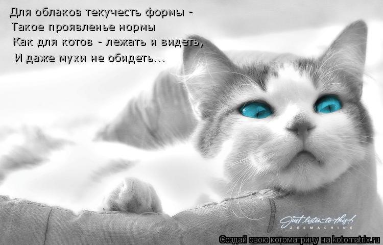 Котоматрица: Для облаков текучесть формы - Такое проявленье нормы Как для котов - лежать и видеть, И даже мухи не обидеть...