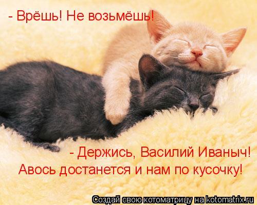 Котоматрица: - Врёшь! Не возьмёшь! - Держись, Василий Иваныч! Авось достанется и нам по кусочку!