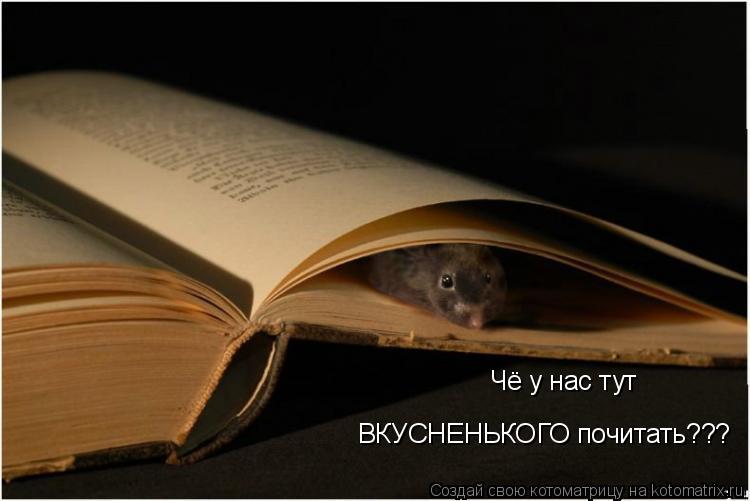Котоматрица: Чё у нас тут  ВКУСНЕНЬКОГО почитать???