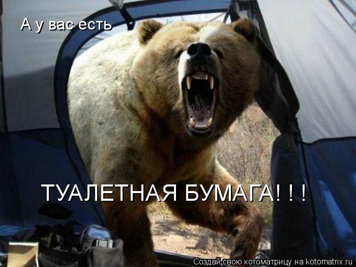 Котоматрица: А у вас есть  ТУАЛЕТНАЯ БУМАГА! ! !