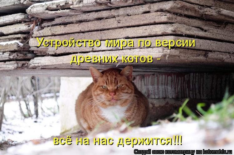 Котоматрица: древних котов - Устройство мира по версии всё на нас держится!!!