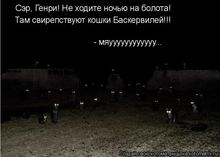 Котоматрица: Сэр, Генри! Не ходите ночью на болота! Там свирепствуют кошки Баскервилей!!! - мяуууууууууууу...