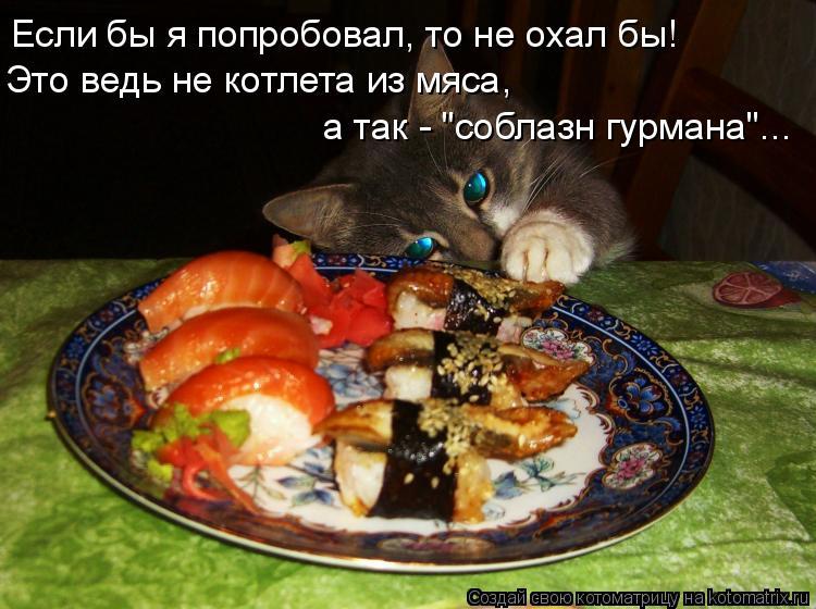 """Котоматрица: Если бы я попробовал, то не охал бы! Это ведь не котлета из мяса, а так - """"соблазн гурмана""""..."""