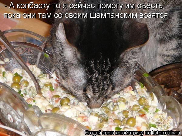 Котоматрица: - А колбаску-то я сейчас помогу им съесть, пока они там со своим шампанским возятся.