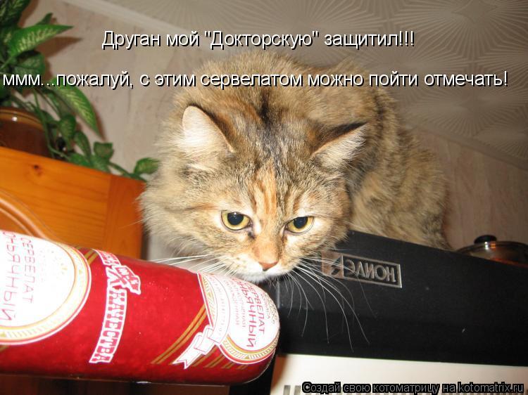 """Котоматрица: Друган мой """"Докторскую"""" защитил!!! ммм...пожалуй, с этим сервелатом можно пойти отмечать!"""