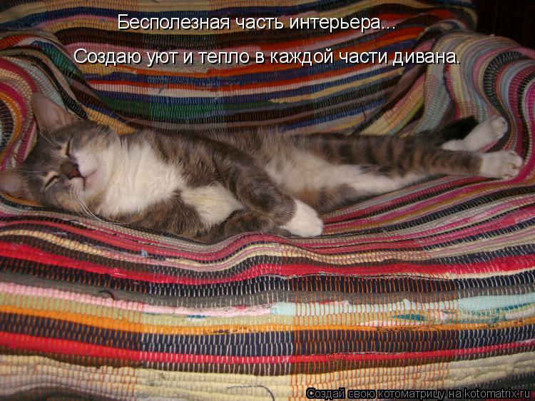 Котоматрица: Бесполезная часть интерьера... Создаю уют и тепло в каждой части дивана.