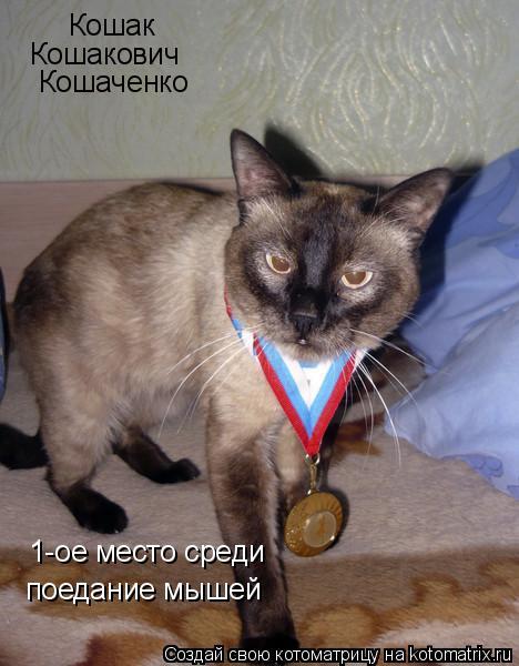 Котоматрица: Кошак Кошакович Кошаченко 1-ое место среди  поедание мышей