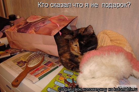 Котоматрица: Кто сказал что я не  подарок?