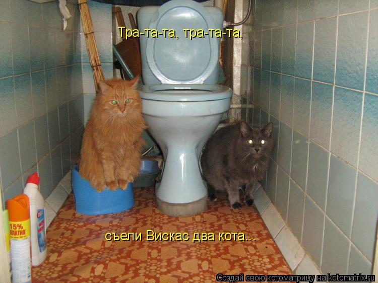 Котоматрица: Тра-та-та, тра-та-та, съели Вискас два кота...