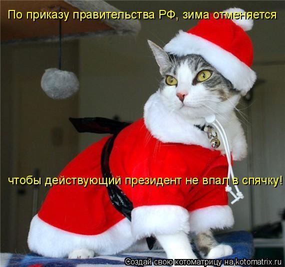Котоматрица: По приказу правительства РФ, зима отменяется чтобы действующий президент не впал в спячку!