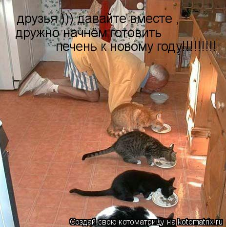 Котоматрица: друзья ))) давайте вместе ,  дружно начнём готовить  печень к новому году!!!!!!!!!