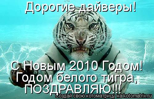 Котоматрица: Дорогие дайверы! С Новым 2010 Годом! Годом белого тигра, ПОЗДРАВЛЯЮ!!!