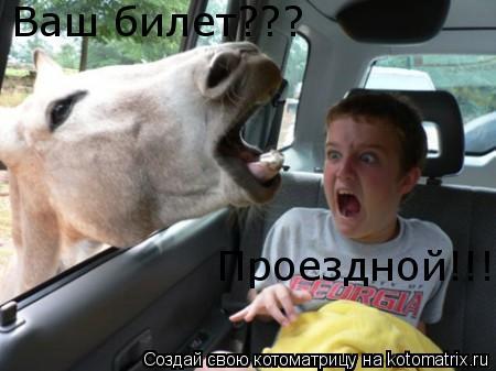 Котоматрица: Ваш билет??? Проездной!!!