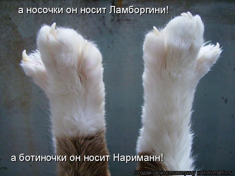 Котоматрица: а носочки он носит Ламборгини! а ботиночки он носит Нариманн!
