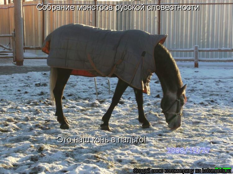 Котоматрица: Собрание монстров русской словестности Это наш конь в пальто!