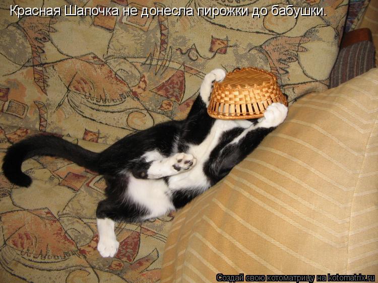 Котоматрица: Красная Шапочка не донесла пирожки до бабушки.