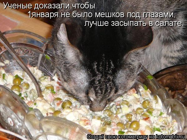 Котоматрица: Ученые доказали:чтобы  1января не было мешков под глазами, лучше засыпать в салате.