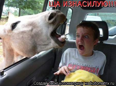 Котоматрица: ЩА ИЗНАСИЛУЮ!!! ЩА ИЗНАСИЛУЮ!!!